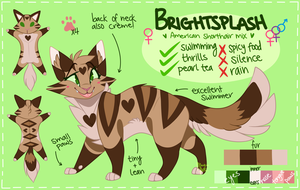 Brightsplash (OFFICIAL REF) by catgittarius