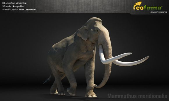 Southern mammoth 3D animation screenshot by EoFauna
