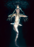 Shark Mermaid by cinemamind