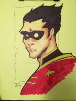 Robin by Etvdesign