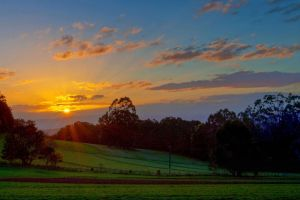 Toolangi Sunset by Bjay70