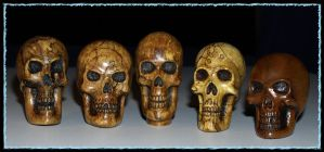 Group of Skulls by lieinbelieve