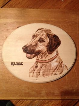Elvis by H20dog