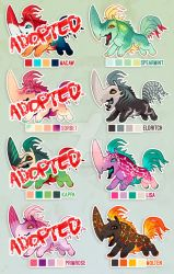 Rooster {RHIPPONS} - 4/8 left for adoption by killaminjaro