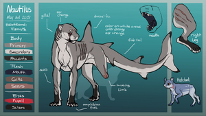 Reference Sheet: Nautilus by Rookie141