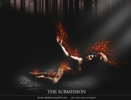 The Submission by ninja-86