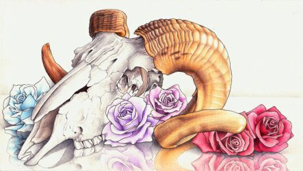Ram Skull with Roses by AlienOffspring