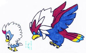 Walky Rufflet and Braviary