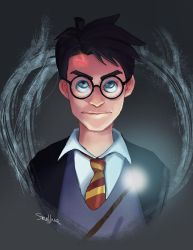 Harry Potter by SteveMillersArt