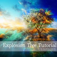 Explosion Tree Tutorial by Teodora-Chinde