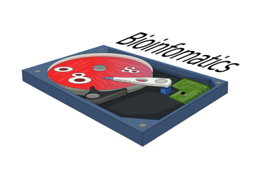 Bioinformatical Hard Drive by doctormo