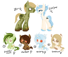 CLOSED spa themed pony adopts by peach-tea-adopts