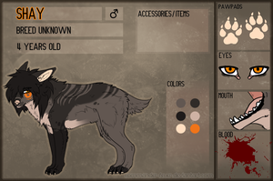 Shay - Reference Sheet by JollyMutt