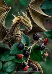 Blackberry dragon by Ironshod