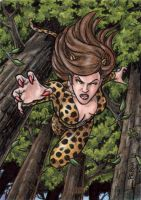 DC: Women of Legend - Cheetah by tonyperna