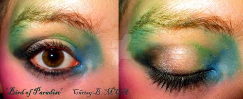 'Bird of Paradise' makeup (compilation) by TheRaven1988