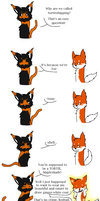 Problem with Tortieshipping by AlmostCreepy101