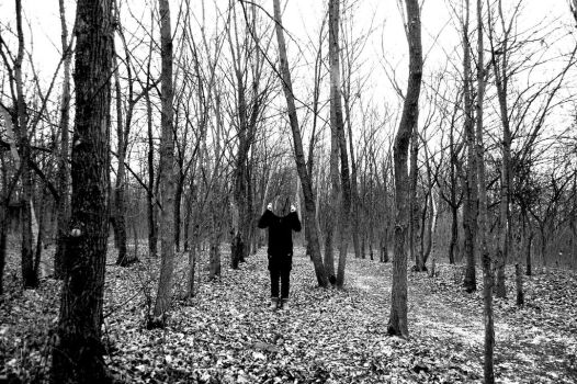 blackand white, mirror, forest 11 by Zoee999