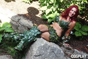 Poison ivy by CanteraImage