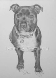 Bella commission by Karentownsend
