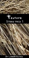 Straw texture - pack 01 by LunaNYXstock