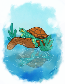 Turtle Lounging at the Pond by SlayerSyrena