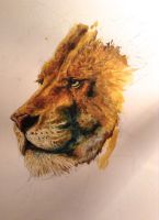 Aslan WIP by Cutestuffrocks