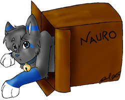 NAURO HAZ BOX? by l3ubbles
