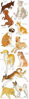 Dog Requests by Saagai