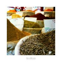 Spices by EmilieDurand