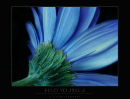 Find Yourself by jteh