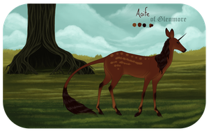 Aoife | Doe | Glenmore Commoner by Wildfire-Tama