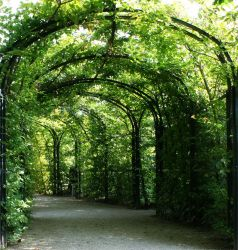 green way1 by Susannehs