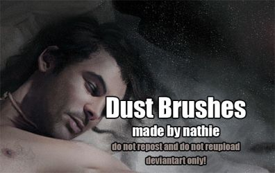 Dust Brushes by nathies-stock