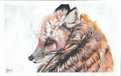 Watercolour - Red Fox by Peach1432