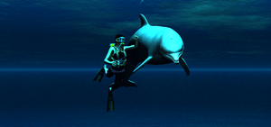 Swimming with a dolphin by LionkingCMSL