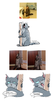Jayfeather and his lovely stick by eighthSun