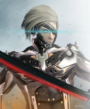 Raiden by EinarIIM