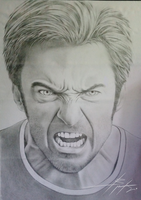Hugh Jackman [Pencil Art] by VEGA-VIER