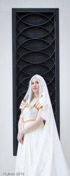 Irisviel: Ladder to the Stars by FoxGlovesCosplay