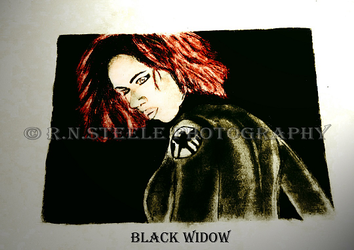 Black Widow Drawing by RNSteele-Photography