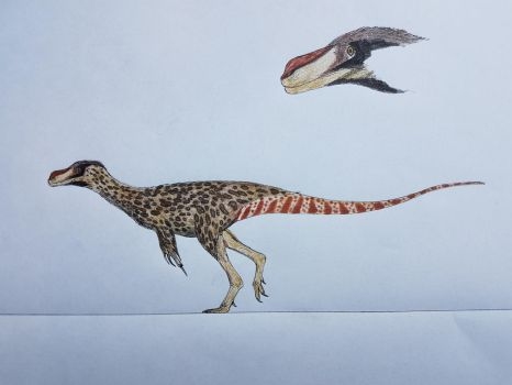 Stokes' spotted cheetahfowl by paleosir