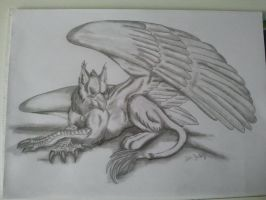 griffin by Zoey-01