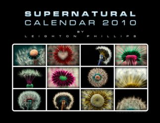 SUPERNATURAL Calendar 2010 by l8