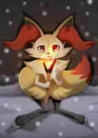 FAN-Braixen In the Cold