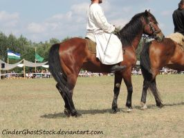 Hungarian Festival Stock 122 by CinderGhostStock