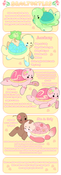 Sealturtles Guide by ToyPaws