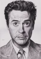 Robert Downey Jr by 220kruger