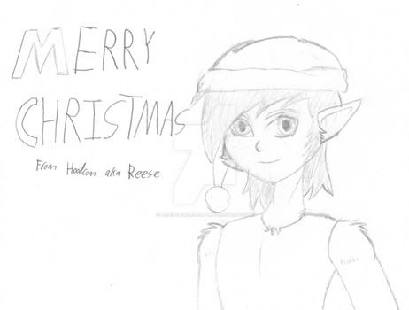 Merry Christmas everyone! 2013 by ReeseRiverson
