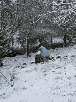 Pizza oven in the snow by Tish-Underwood